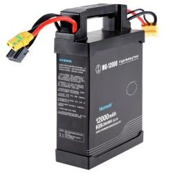Batterie pour Agras MG-1S